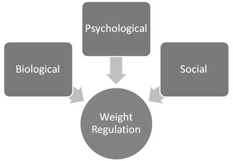 bio-psycho-social simple