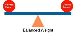 Chap 4 WT balance lever